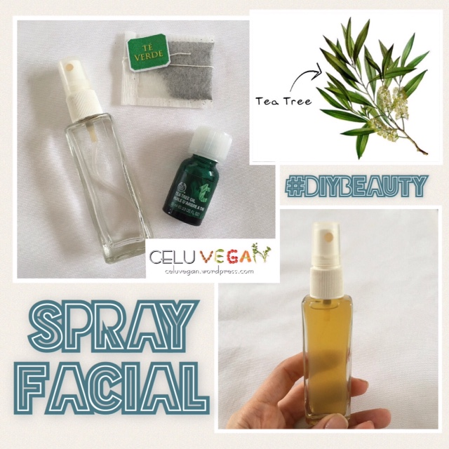 diy-spray-facial