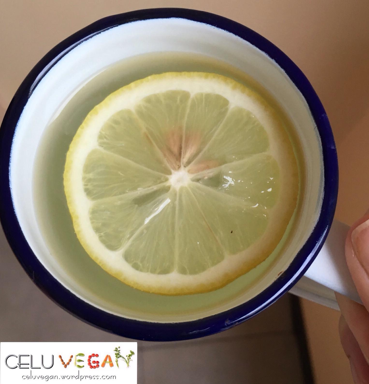mi-huerta-vegana-limon-1