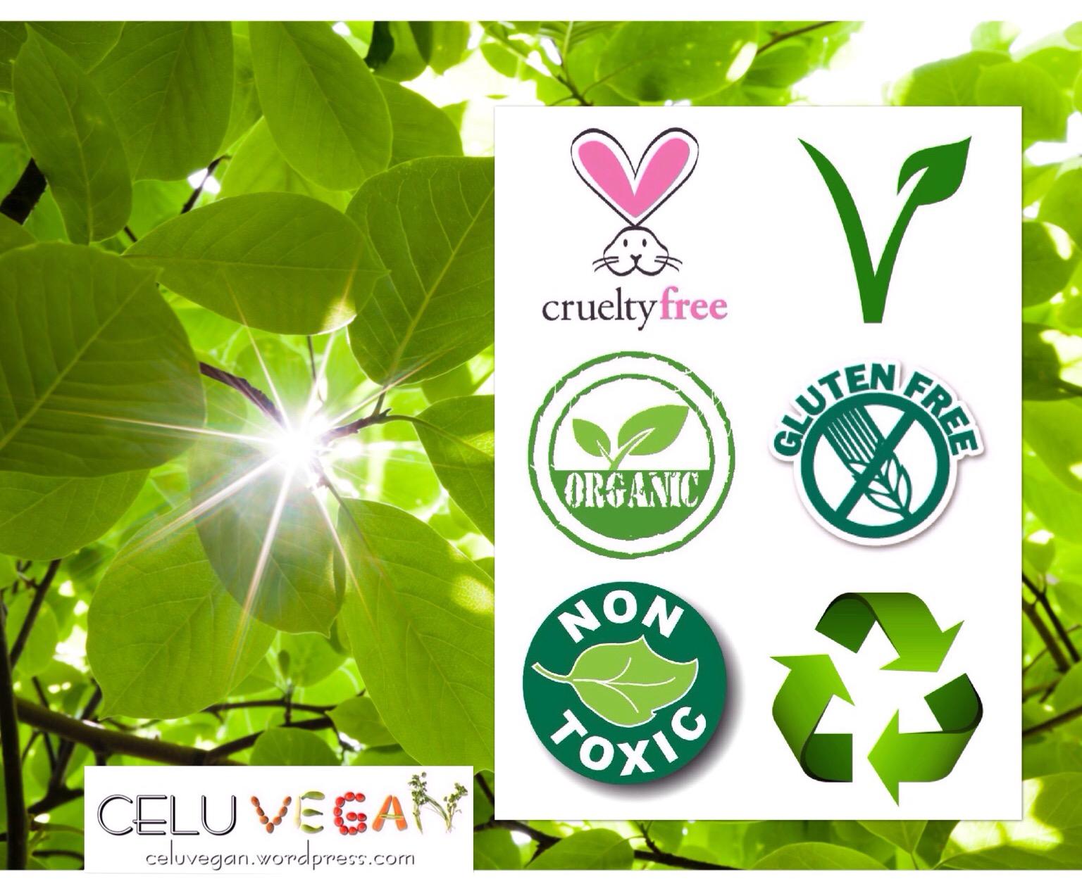 Puntos-a-tener-en-cuenta-antes-de-cambiarte-a-una-Rutina-de-Belleza-Verde-y-libre-de-Toxinas