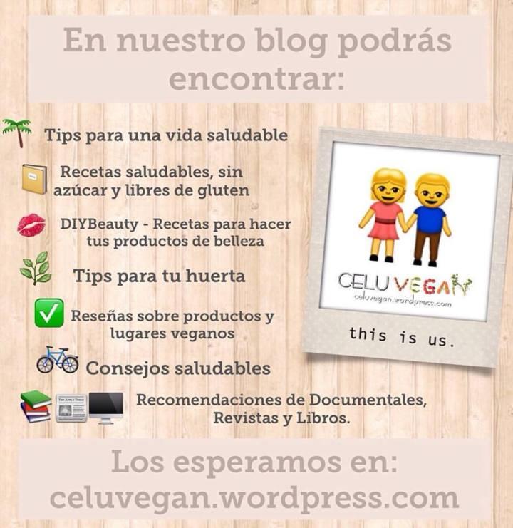 blog-vegano