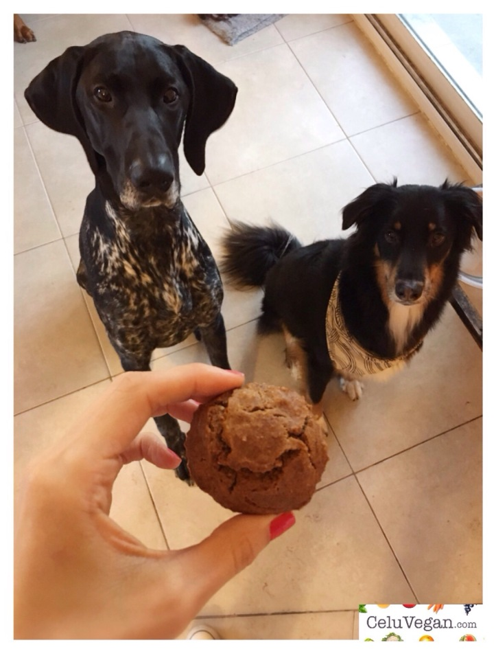 Cupcakes-Veganos-de-Zanahoria-para-Perros