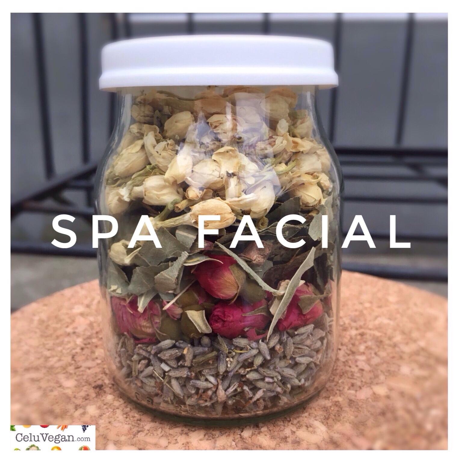 DIY-Spa-Facial