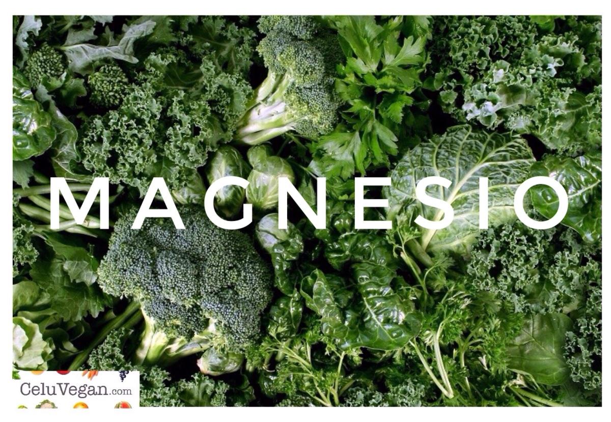 El magnesio y los alimentos que más lo contienen