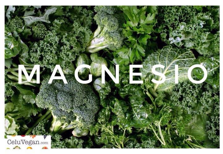 Magnesio-Alimentos-Que-Lo-Contienen