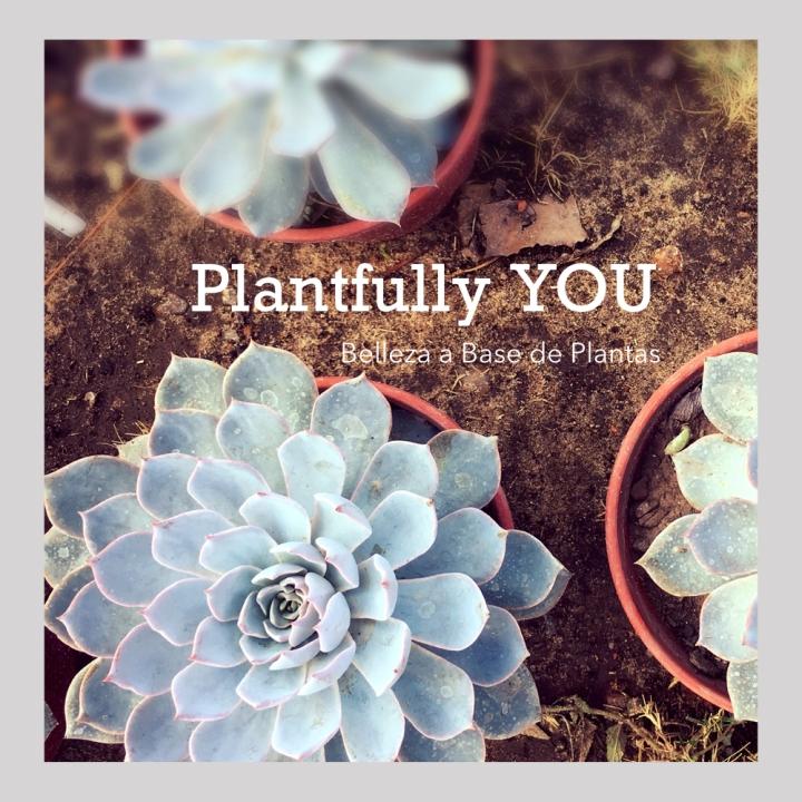 Plantfully Logo.001